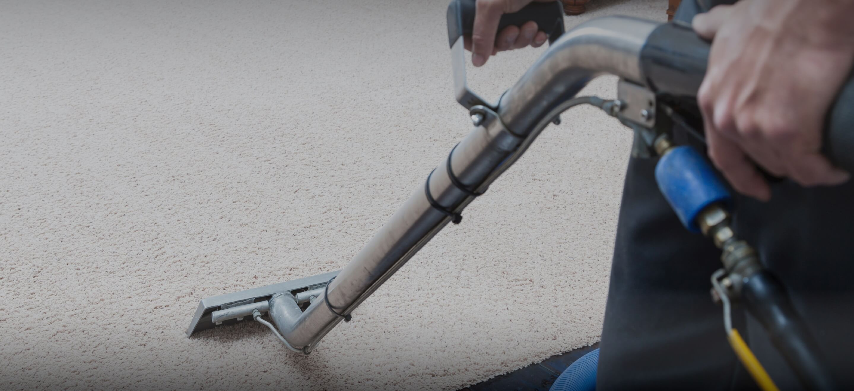 Carpet Cleaning Services In Sunnyvale Quality Local